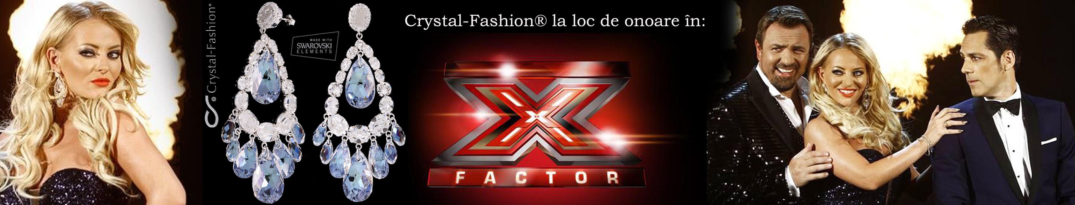 Delia Matache la X Factor